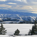 Winterland by JoJo Photography