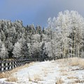 Winters Day In The Mountains by Judithann O'Toole