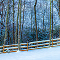 Winters Day - Pisgah Forest Nc by Donnie Whitaker