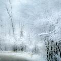 Winters Dreamy Landscape by Julie Palencia