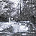 Winter's Gates by Steve Harrington