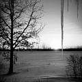 Winters Glow #2 by Karen Dzielsky
