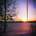 Winters Glow by Karen Dzielsky
