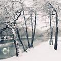 Winter's Grace by Jessica Jenney