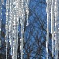 Winter's Icy Fingers by Jackie Mueller-Jones
