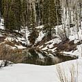 Winters Pond by Steven Parker