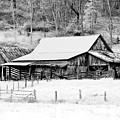 Winter's White Shroud by Tom Mc Nemar