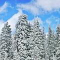 Winterscape by Jeffrey Kolker