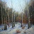 Winterscape by Paula Ann Ford