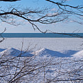 Wintry Lakeshore by Ann Horn
