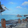 Wip- Pelican 03 by Cindy D Chinn