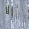Wisconsin Icicles by Wendy Smith