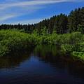 Wisconsin River In Vilas County by Dale Kauzlaric