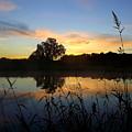 Wisconsin Sunrise by Viviana  Nadowski