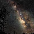 Wish Upon The Stars  4662 by Karen Celella