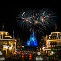 Wishes At Magic Kingdom by James Wellman
