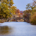 Wissahickon Autumn by Bill Cannon