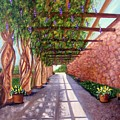 Wisteria Walk At The Biltmore by Susan Dehlinger