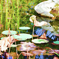 Withered Lotus In The Pond 2 by Jeelan Clark