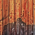 Within A Wooden Fence by Onie Dimaano