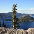 Wizard Island With Rock Fence At Crater Lake by Carol Groenen