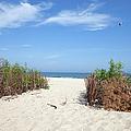 Wladyslawowo White Sand Beach At Baltic Sea by Artur Bogacki