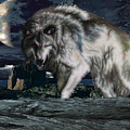 Wolf At Night by Edelberto Cabrera