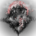 Wolf by Bekim M