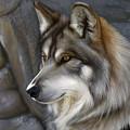 Wolf by Gretchen Bartz