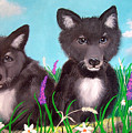 Wolf Pups by Nick Gustafson
