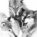 Wolf Triplets by Athena Mckinzie