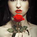 Woman Holding A Red Rose by Amanda Elwell