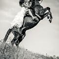 Woman In Dress Riding Chestnut Black Rearing Stallion by Dimitar Hristov