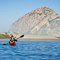 Woman Kayaking In Morro Bay by Bill Brennan - Printscapes
