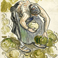 Woman Picking Cabbage by Camille Pissarro
