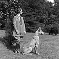 Woman With Great Dane, C.1920-30s by H. Armstrong Roberts/ClassicStock