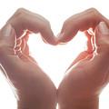 Woman's Hands Make A Heart Shape On White Background, Backlight. Love by Michal Bednarek