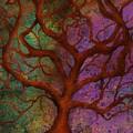 Wonder Tree by Ellen Dawson