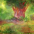 Wonder Woods by Lance Sheridan-Peel