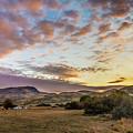 Wonderful Morning by Robert Bales