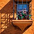 Wonderful Window Shadow by Garry Gay