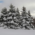 Wonderful Winter by Kathleen Sartoris