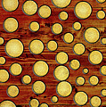 Wood And Gold by Gaspar Avila