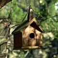 Wood Birdhouse by Joyce StJames