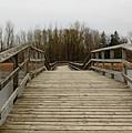 Wood Boardwalk At Valens by Debbie Oppermann