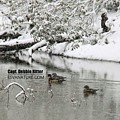 Wood Duck Snow 4524 by Captain Debbie Ritter