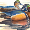 Wood Ducks by Ruth Bevan