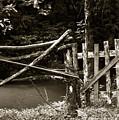 Wood Fence by Amarildo Correa