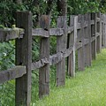 Wood Fence by Roger Ulm