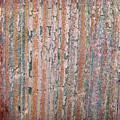 Wood No 5 by Renata Vogl